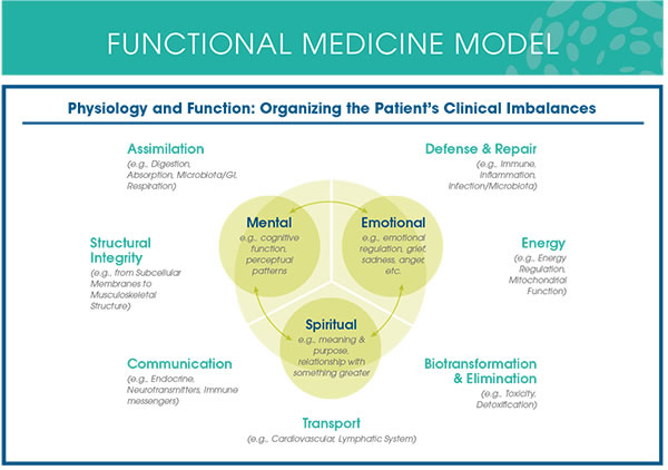Functional Medicine Matrix. Is your perfect diet making you sicker?