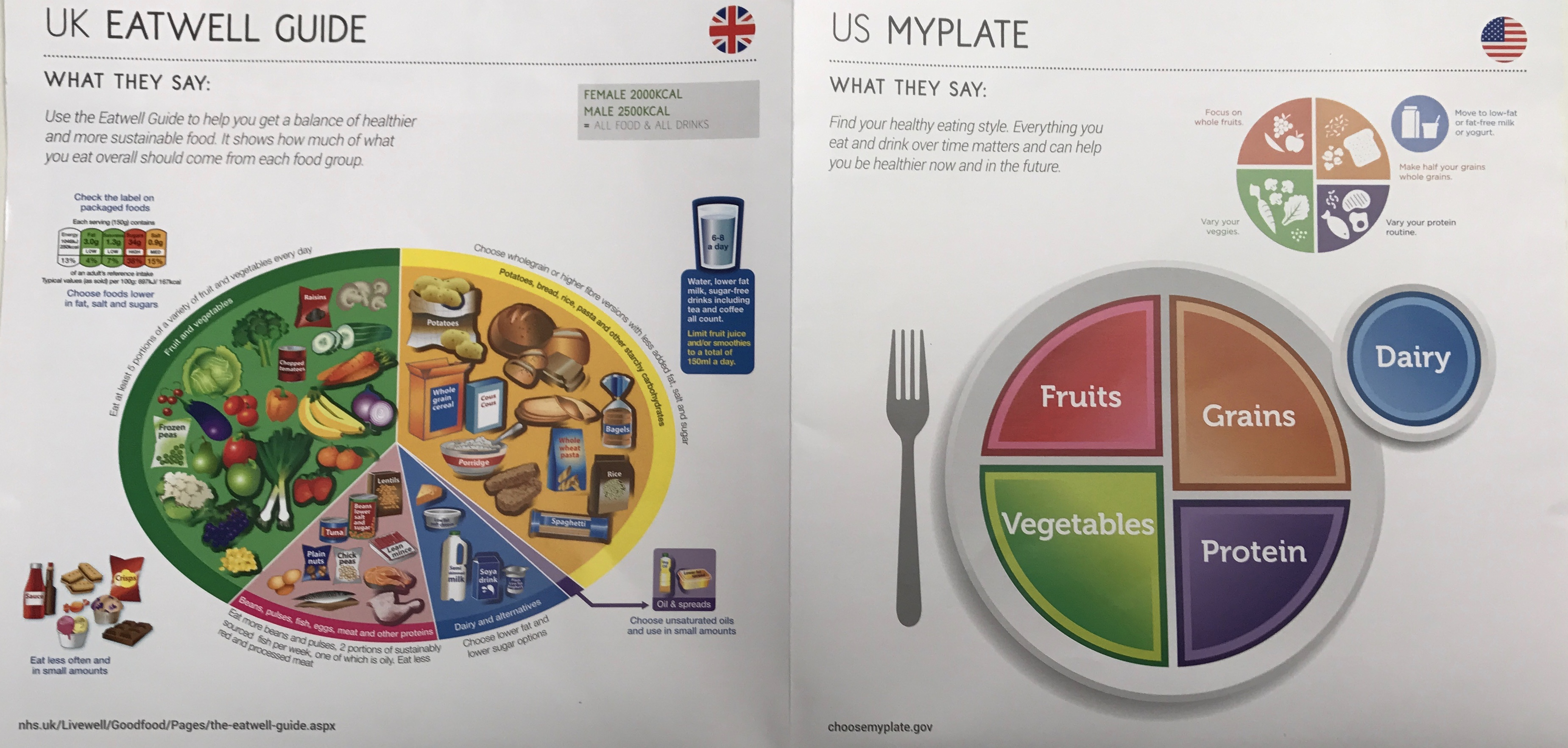 Healthy Plate Guidelines